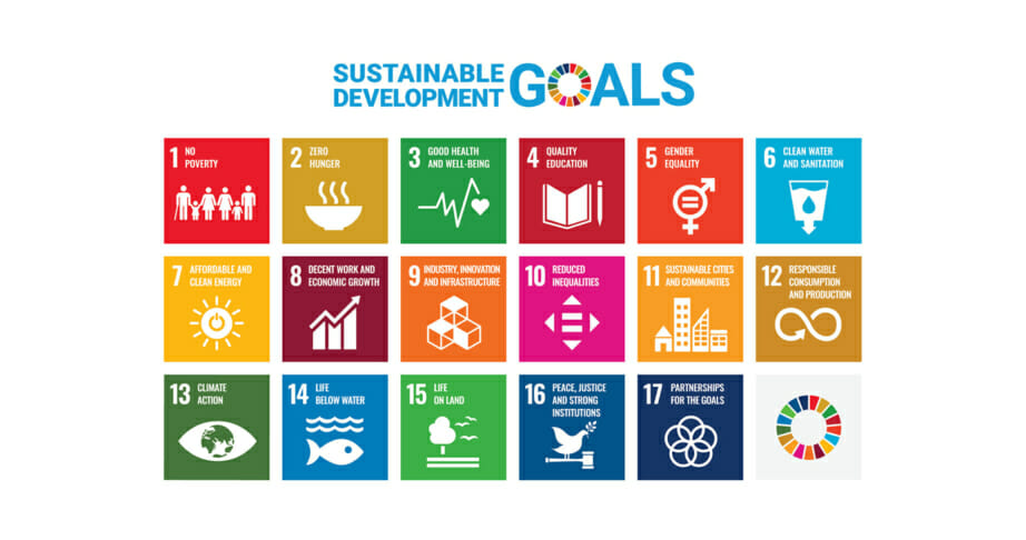 UN Development Goals